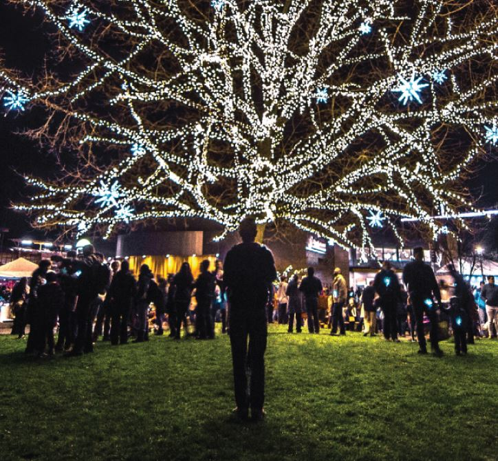 Redmond Lights