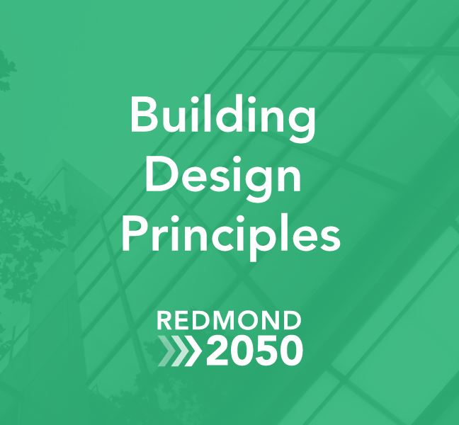 Redmond 2050 design principles